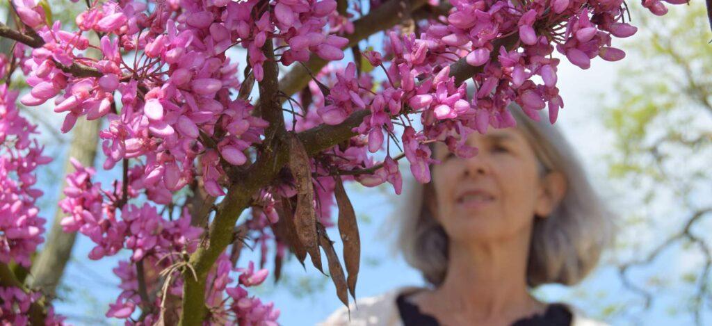 Truus bij de roze bloesem