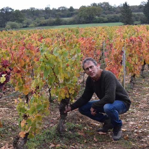 Joan Koster in de wijngaard.jpg
