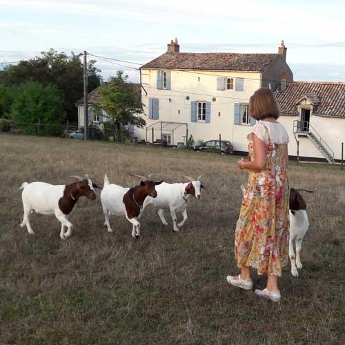 Truus met de geitjes